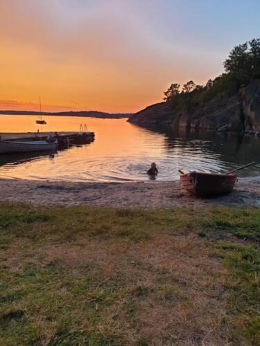 Sandvik-sunset